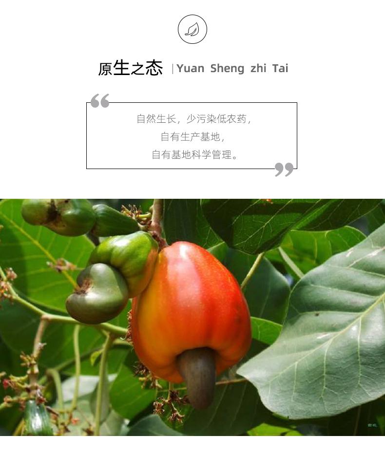 腰果详情页02