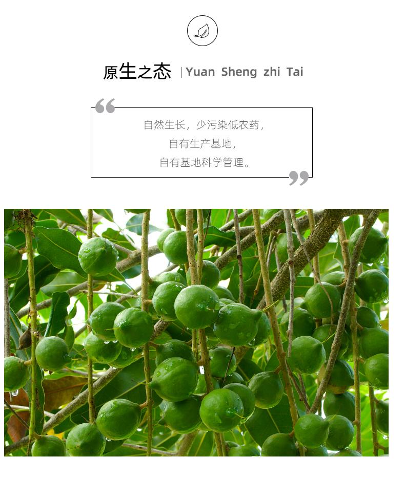 碧根果详情页_03