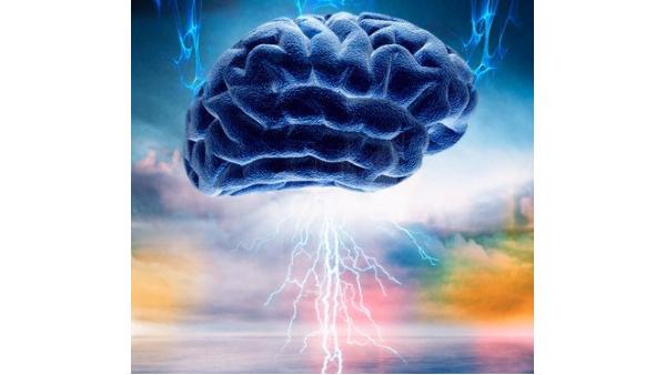 健脑市场将成为商家必争之地