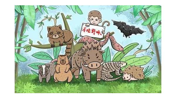 世界野生动植物日,它们需要保护