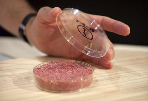 人造肉小图
