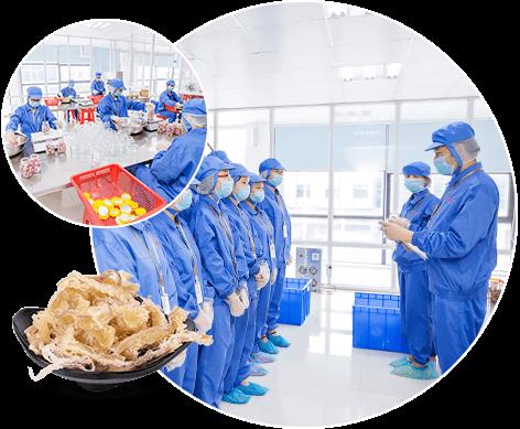 科学质量管理体系,确保产品品质
